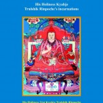 His Holiness KyabjeTrulshik Rinpoche incarnation-1